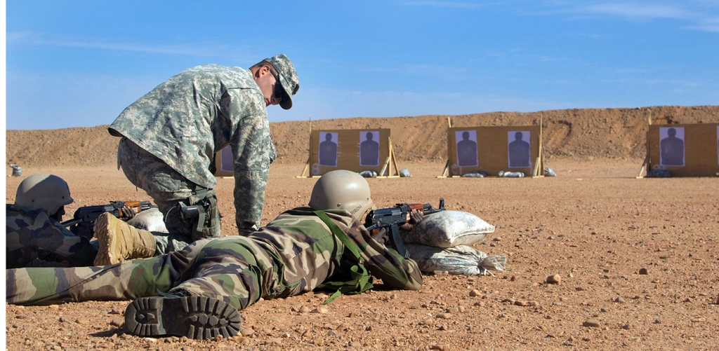 niger us training